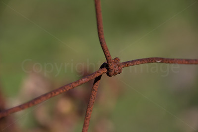 Rusty wire fence
