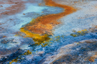 Icelandic Color