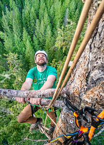 Oregon State Phd. candidate is studying the microclimate of the upper canopy in old growth forests.
