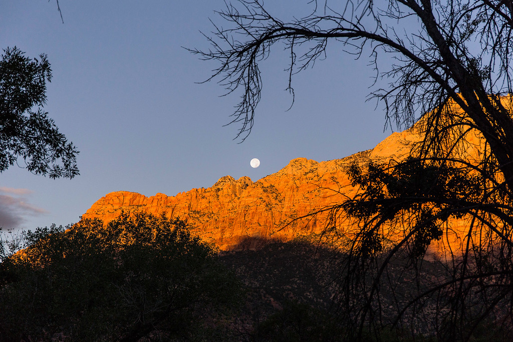 Full moon  setting, from Watchman Campground, valley floor, Zion National Park, Utah
