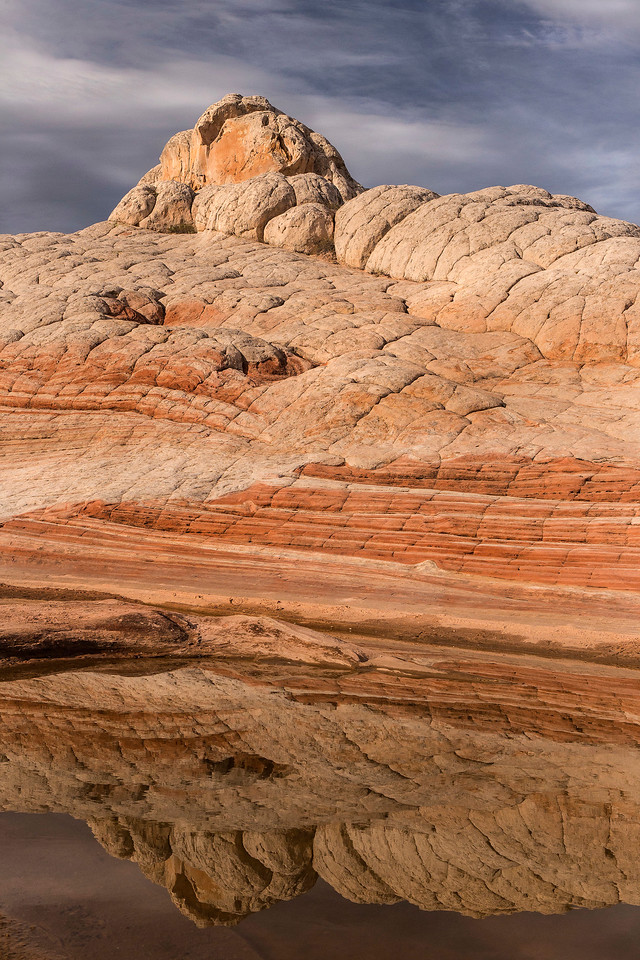 Morning light on rocks reflected in water hole, White Pocket, Vermillion Cliffs National Monument, Arizona