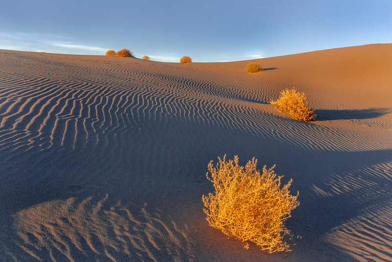 Late evening, Bruneau Dunes State Park, Idaho