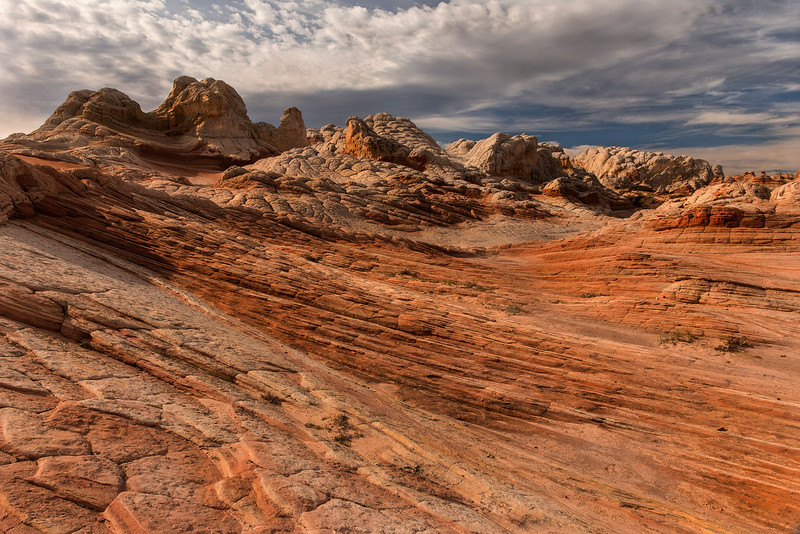 White Pocket terrain, White Pocket, Vermillion Cliffs National Monument, Arizona