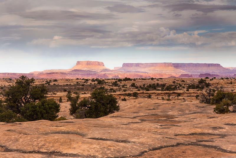 Backcountry, from Potholes, Needles Unit of Canyonlands National Park, Utah