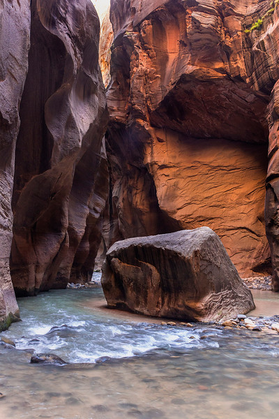 The upper end of Wall Street,  Zion Narrows, Zion National Park, Utah