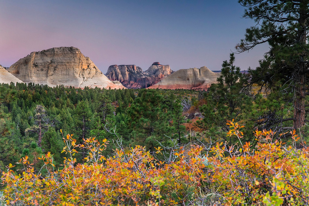 Dusk, Zion back country, Zion National Park, Utah