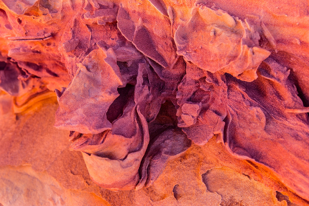 Sandstone detail; Coyote Buttes South, Vermillion Cliffs National Monument, Arizona