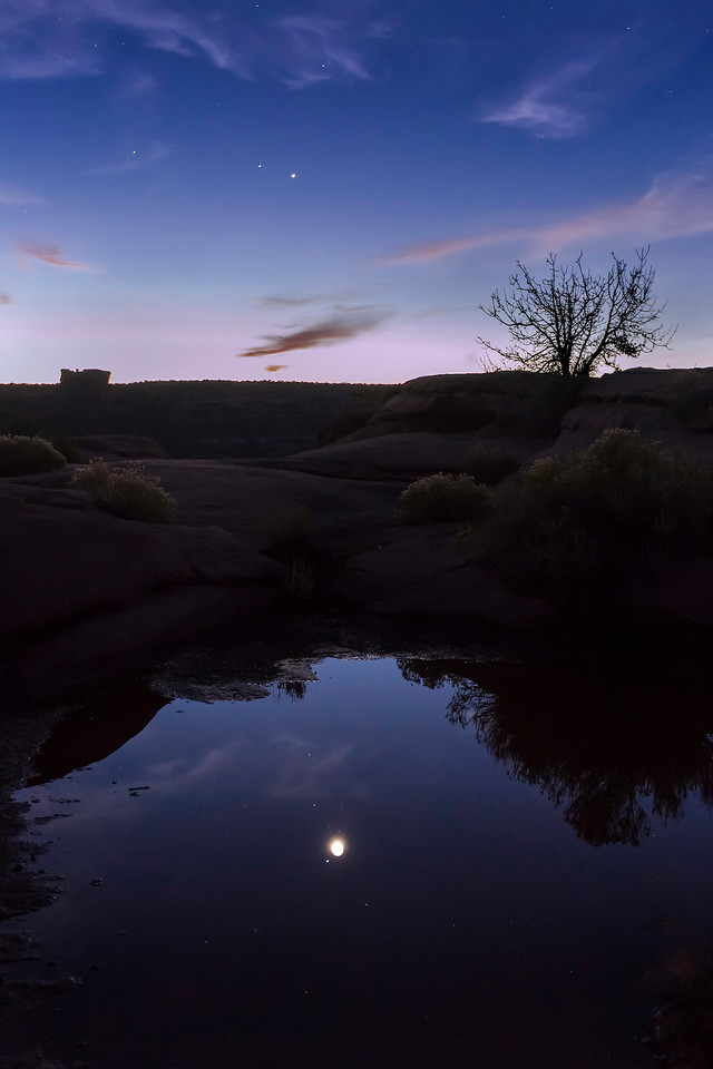 Moon reflected in pothole, Green River Viewpoint, Island in the Sky Unit, Canyonlands National Park, Utah