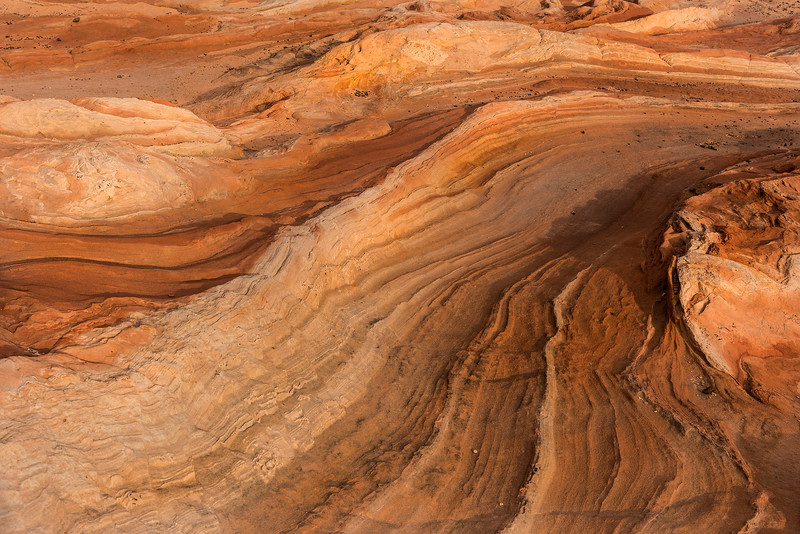 Late afternoon light on formations, White Pocket, Vermillion Cliffs National Monument, Arizona