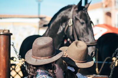 Golega Horse Fair And Saint Martin's Horseback Procession