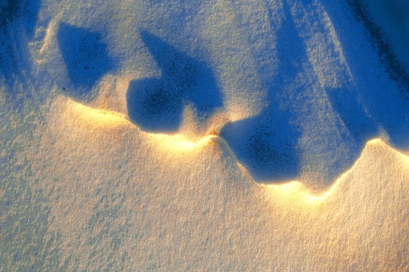 snow977curve  sel color HC