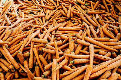 Large Pile of Carrots