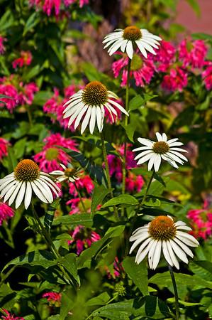 White River Gardens Indianapolis, Indiana