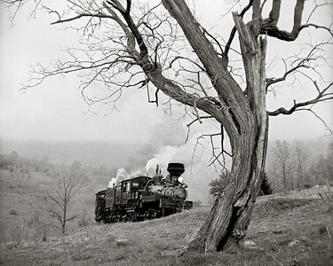 Shay Locomotive #4 Pulling Train at Cass Scenic Railroad West Virginia