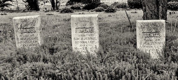 Evergreen Cemetery, Manchester, California