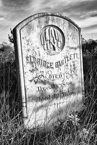 Evergreen Cemetery - February 2012