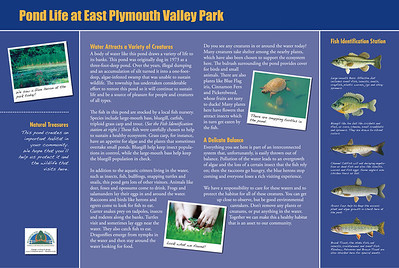 Signage research, writing, design and art research for three interpretive signs at Plymouth Township PA Department of Parks & Recreation's East Plymouth Valley Park