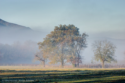 Cades Cove, Great Smoky Mountains National Park (HDR)
