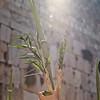 Sukkot - Prayer 201