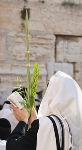 Sukkot - Prayer 190