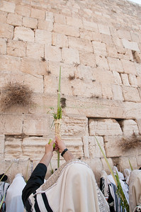 Sukkot Jerusalem 2009-215