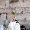 Sukkot - Prayer 099