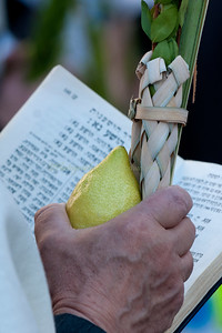 Sukkot - Prayer 129