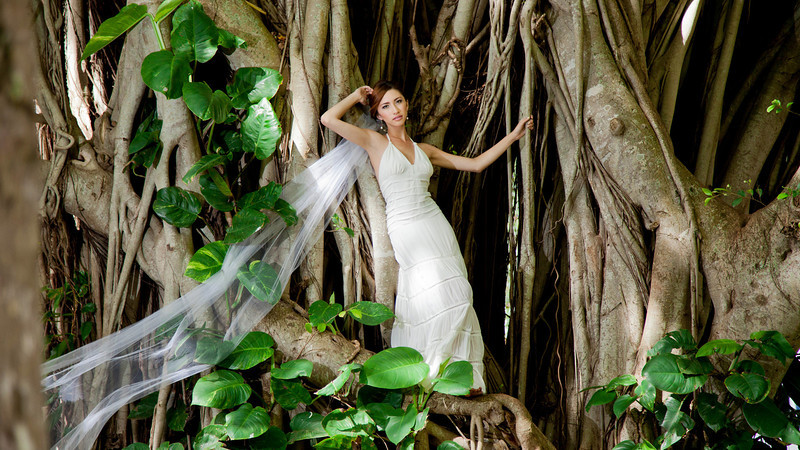 Maui Bride posed in Banyan Tree in Maui's Iao Valley