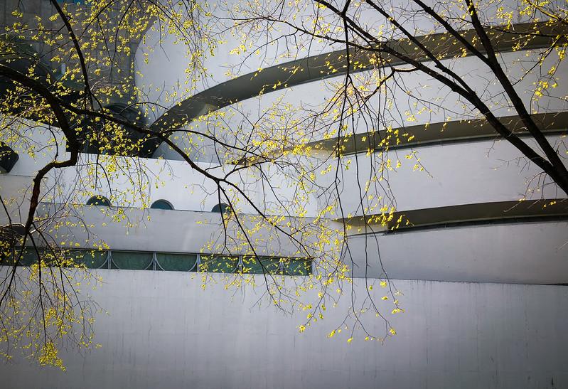 Guggenheim in Spring