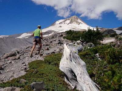 Ascending Gnarl Ridge