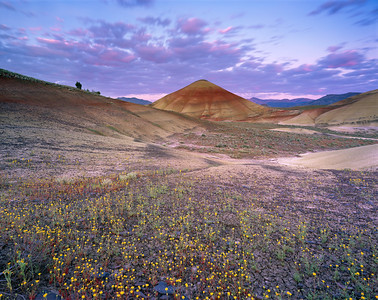 Painted Hills Sunrise