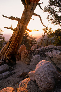 South Sierra Evening