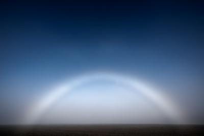 Fogbow in Field