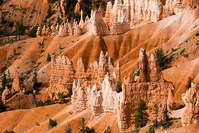 Morning light in Bryce Canyon