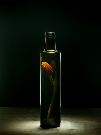 Bottled Beauty