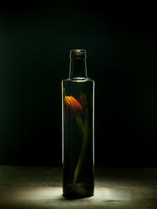 Bottled Beauty