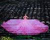 Pink Parachute in South Carolina