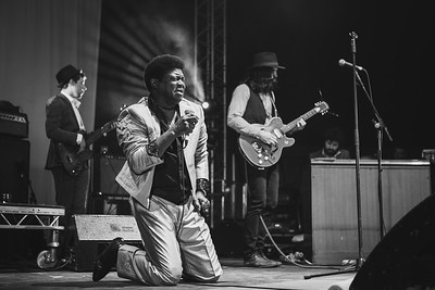 Charles Bradley (The Screaming Eagle of Soul)