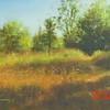 Autumn Secrets<br /> 5x7<br /> Oil on canvas panel