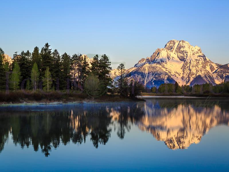 Mt. Moran At Dawn