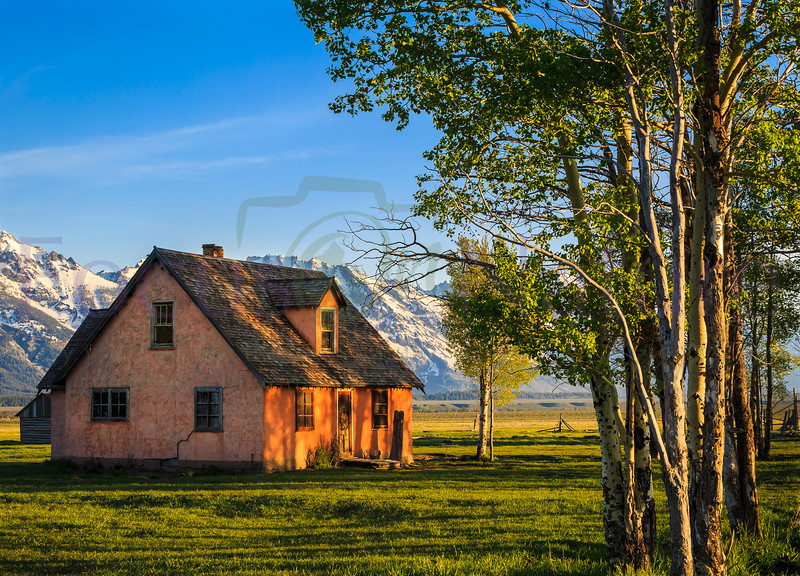 Morning Glow At Moulton Homestead