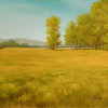 Yellow Gold in the Grand Tetons<br /> 12x16 <br /> Oil on canvas