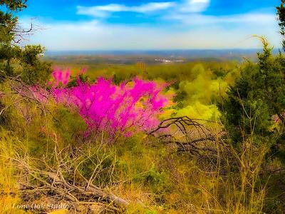 Missouri Spring Landscape
