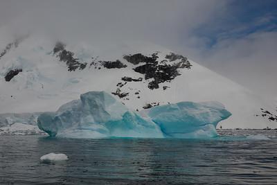 Curtiss Bay Icescape - Antarctica