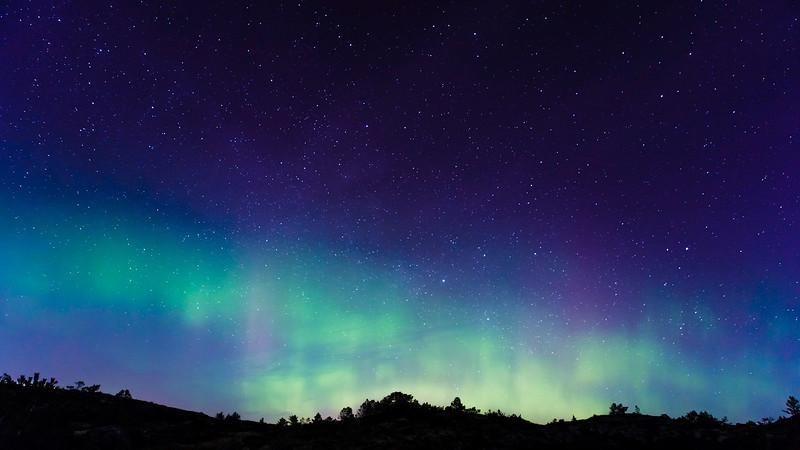 Star Speckled Aurora