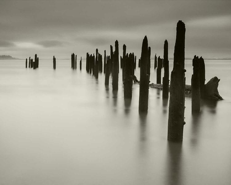Pilings, Columbia River near Illwaco, Washington