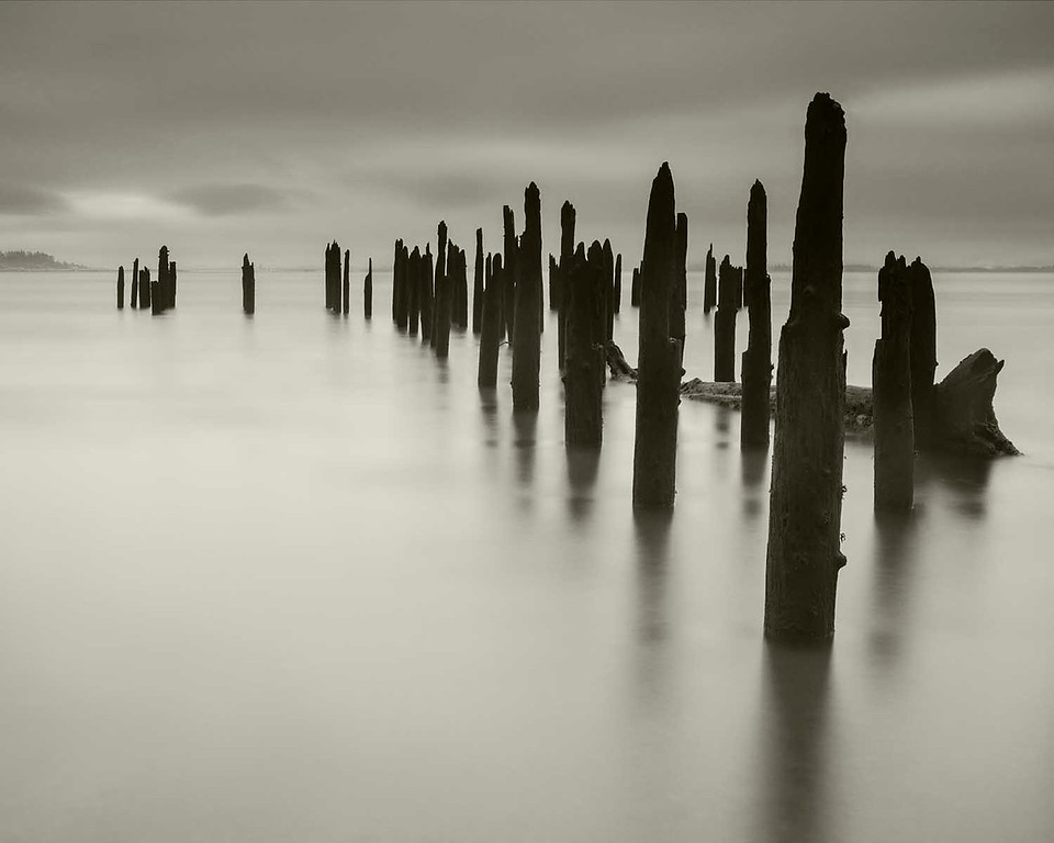 Pilings, Columbia River near Illwaco, Washington