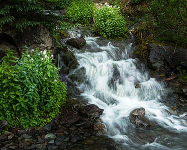 Abundant Flow