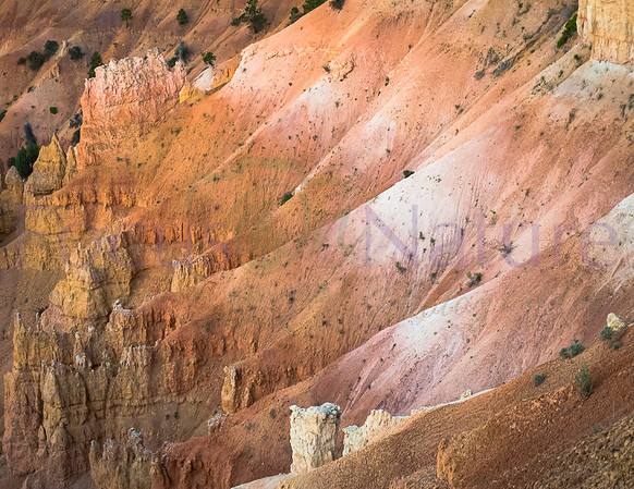 Deep In Bryce Canyon