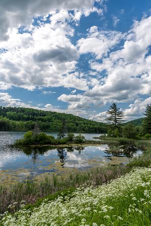 Baker Pond